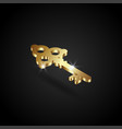 luxury golden key vector image vector image