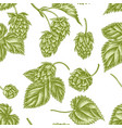 seamless pattern with hand drawn pastel hop vector image vector image