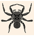 Spider with abstract pattern vector image vector image