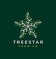 tree star branch leaf logo icon vector image