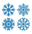 Various winter snowflakes set vector image