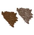bosnia and herzegovina - map of coffee bean vector image vector image