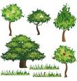 Cartoon plants es set vector image vector image