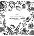 floral design with black and white almond vector image vector image