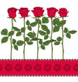 set color with red roses vector image vector image