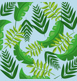 tropical leaves foliage frond plant seamless vector image