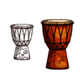 sketch icon of drum musical instrument vector image