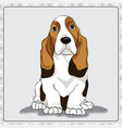basset-hound cartoon dog vector image
