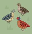 Birds set California Quail Blue bird Brown b vector image vector image