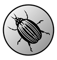 Bug button vector image vector image