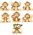 cartoon monkeys collection set vector image