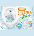 cool mint toilet cleaner ad 3d vector image vector image