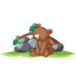 isolated picture little bear in park vector image vector image