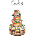 watercolor big cake vector image vector image