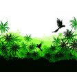 green palms and parrots vector image
