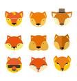 Set foxes muzzle different nature vector image