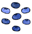 blueberry doodle style design isolated on vector image vector image