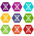 dna icon set color hexahedron vector image vector image