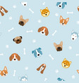 dog breeds head seamless pattern vector image