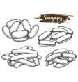 vintage sketch tied sausage or line meat vector image