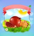 Juicy pomegranate label design vector image