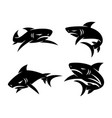 shark animal logo design set template vector image vector image