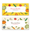 vegetable theme gift certificate voucher gift vector image vector image