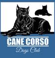 cane corso - for t-shirt logo vector image vector image