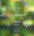Eco background with vegetables vector image vector image