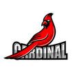 modern cardinal bird logo vector image vector image