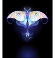 Moonlight Butterfly vector image vector image