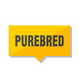 purebred price tag vector image vector image