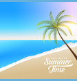 beautiful summer beach scene with palm tree vector image vector image