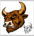 bull head mascot - vector image vector image