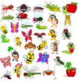 cartoon insects collection set vector image