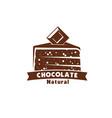 chocolate cake or cocoa sweet dessert icon design vector image