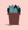 collection of an indoor flower in pot vector image vector image