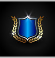 luxury shield shield guard protection and safety vector image vector image