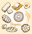 bakery set hand drawn vector image
