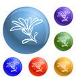 calendula flower icons set vector image