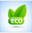 Eco sign with green spring leafs vector image