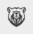 face bear vector image