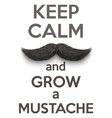Keep Calm and grow a Mustaches vector image vector image