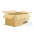 open cardboard box with foam peanuts vector image