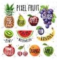 Pixel fruit vector image vector image