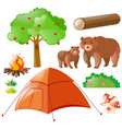 bears and camping elements vector image
