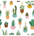 home plants pattern seamless flower potted plant vector image