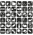Icons farm animals and products vector image vector image