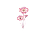 Pink watercolor flower vector image vector image