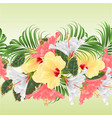 seamless border tropical flowers floral vector image